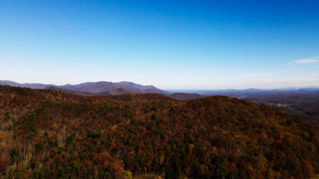 Blue skies and fall colored trees on Black Mountain in North Carolina